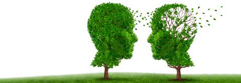 Polskie Stowarzyszenie Pomocy Osobom z Chorobą Alzheimera